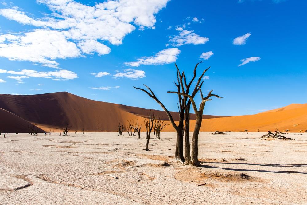 Dodevlei Namibië