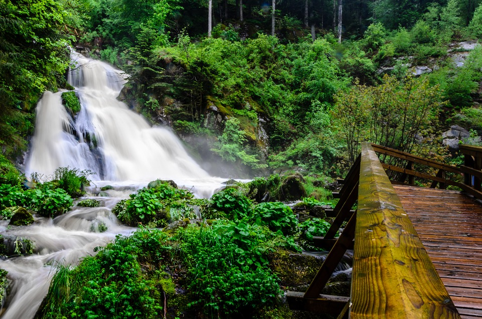 Triberger watervallen zwarte woud