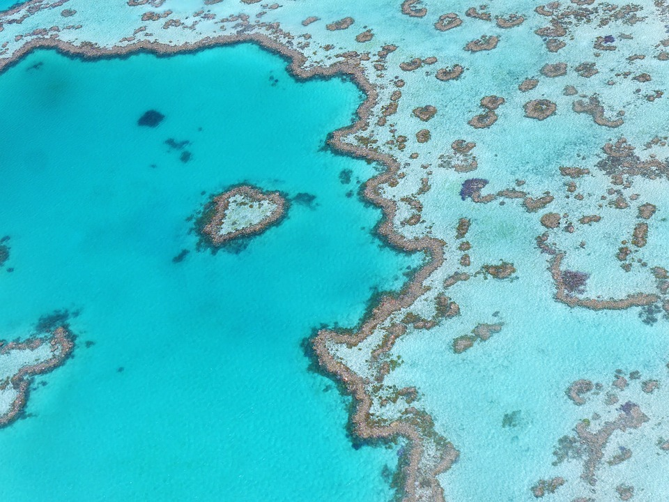Great Barrier Reef 2