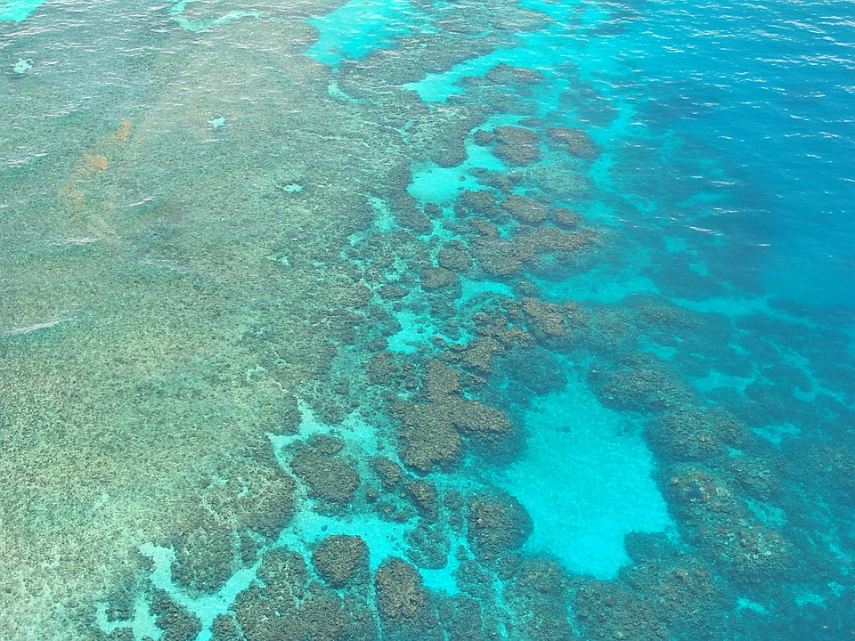 Great Barrier Reef duiken